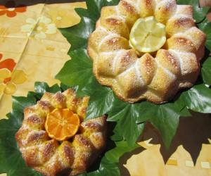 Bizcochos gemelos naranja y limón Thermomix