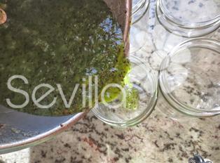 Mermelada de kiwi Thermomix