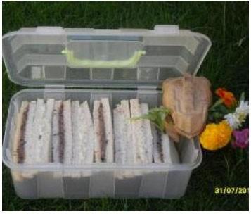Maleta de picnic