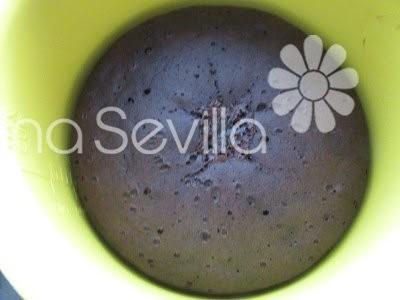 Bizcocho de chocolate y café olla GM